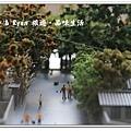newIMG_0099.jpg