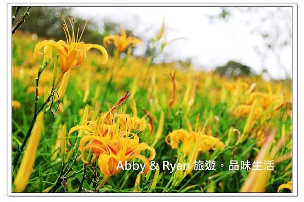 newIMG_0102.jpg