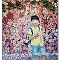 newIMG_1079.jpg