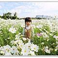 newIMG_0200.jpg