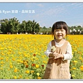 newIMG_0255.jpg
