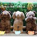 newIMG_0357.jpg