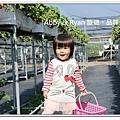 newIMG_1213.jpg
