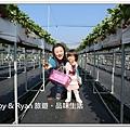 newIMG_1254.jpg