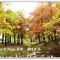 newIMG_0285.jpg