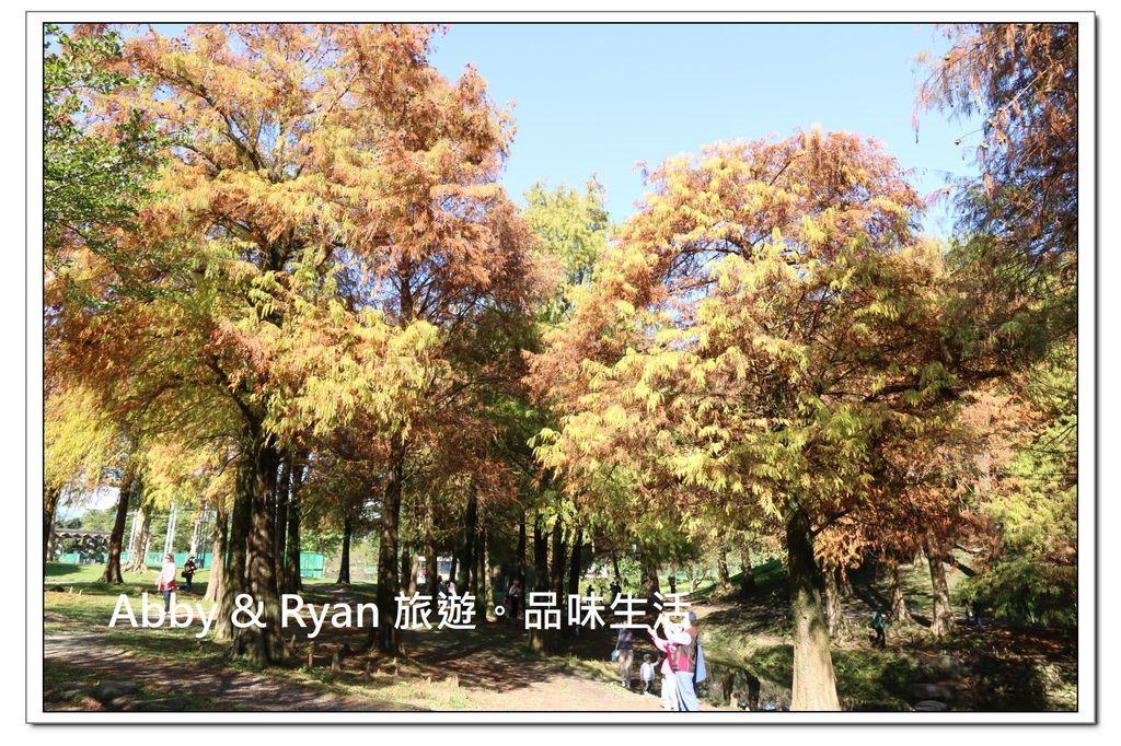 newIMG_0635.jpg
