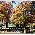 newIMG_0638.jpg