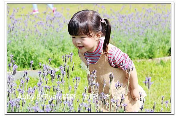 newIMG_0058.jpg