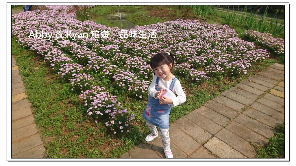 newDSC_3435.jpg