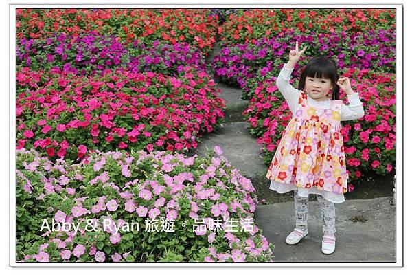newIMG_9371.jpg