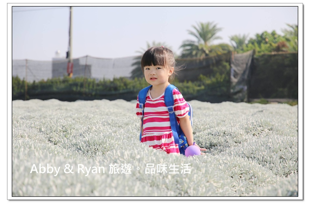 newIMG_5296.jpg