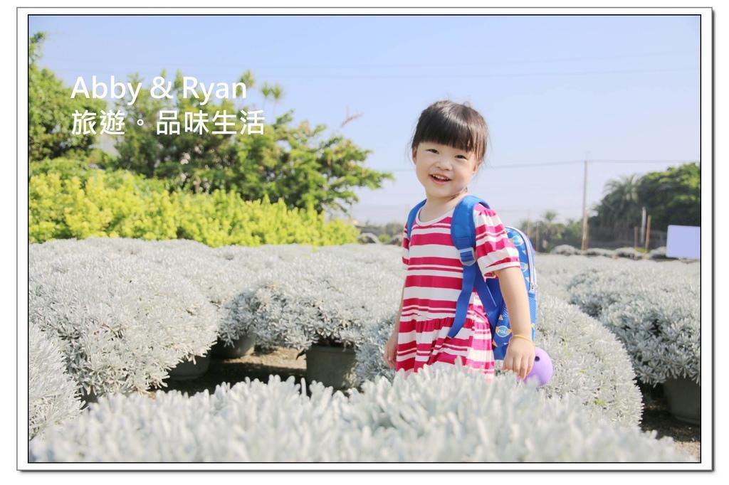 newIMG_5347.jpg