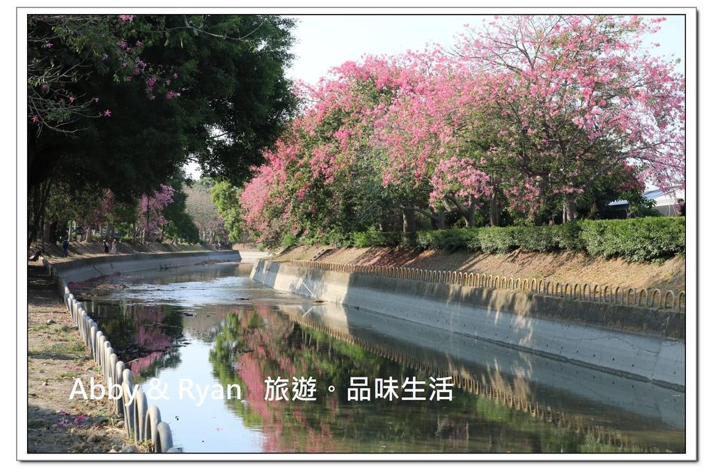 newIMG_5695.jpg