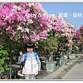 newIMG_7769.jpg