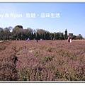 newIMG_9486.jpg