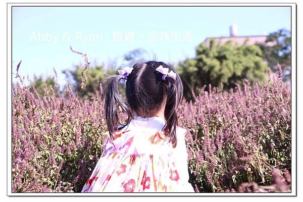 newIMG_9500.jpg