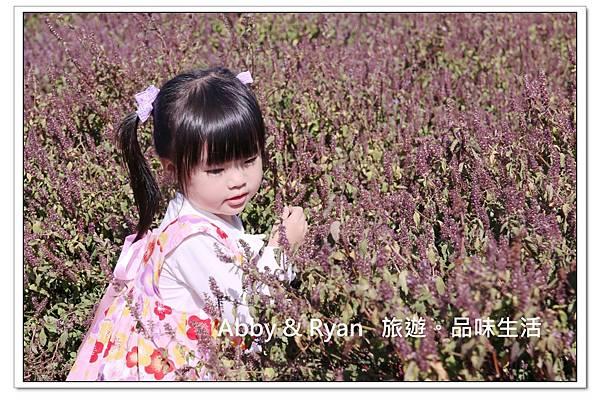 newIMG_9506.jpg