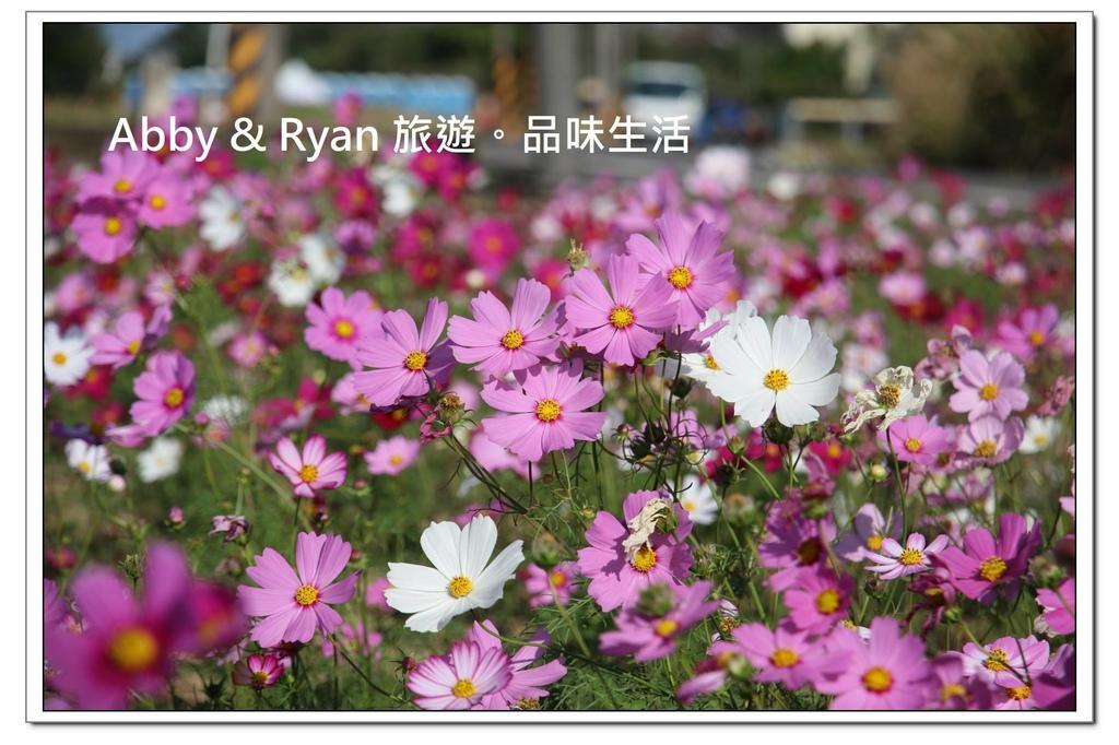newIMG_9385.jpg