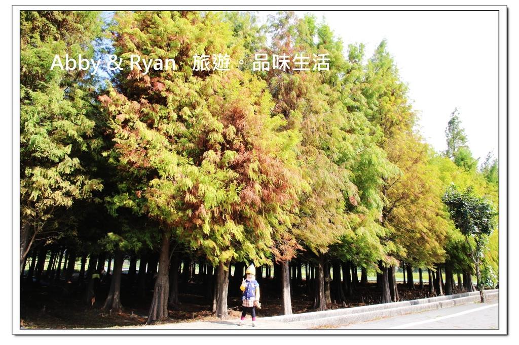 newIMG_2669.jpg