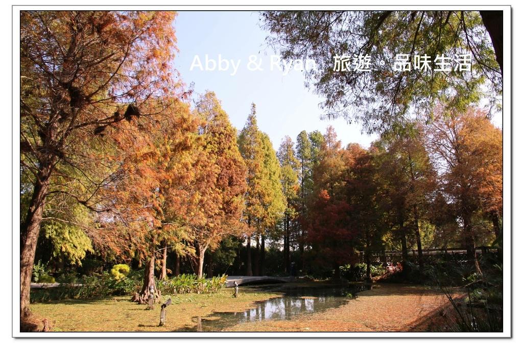newIMG_3419.jpg