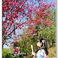 newIMG_4414.jpg