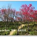 newIMG_4876.jpg