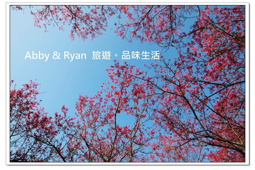 newIMG_4924.jpg