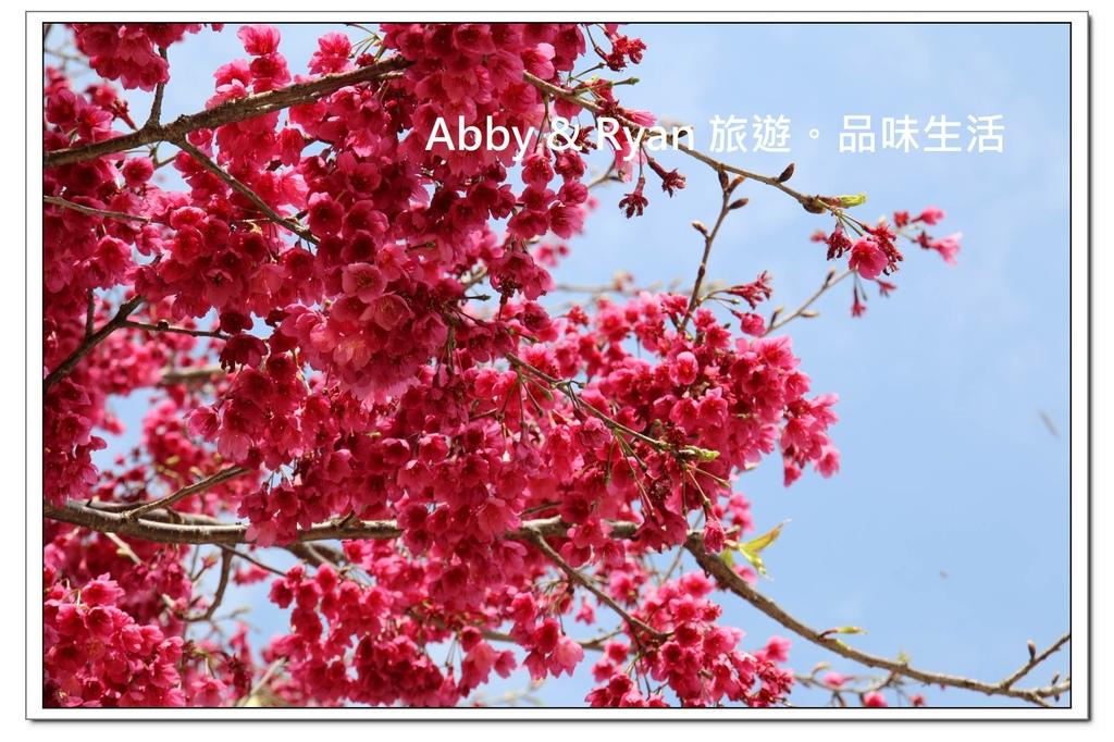 newIMG_6283.jpg