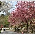 newIMG_6358.jpg