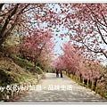 newIMG_6416.jpg