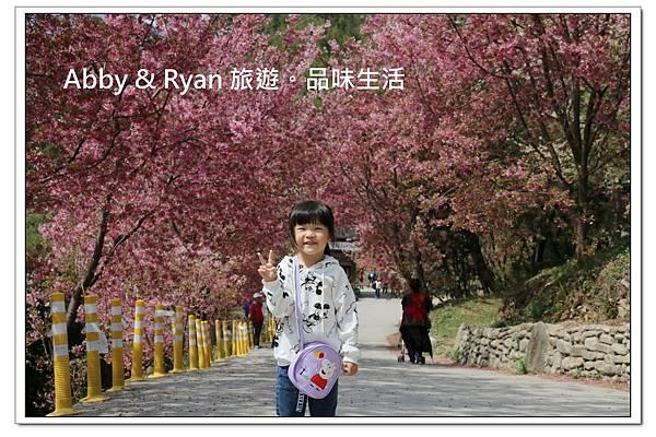 newIMG_6418.jpg