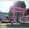 newIMG_9517.jpg