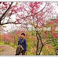 newDSC02729.jpg