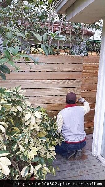 南方松圍牆2.jpg