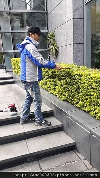 庭園維護保養.jpg