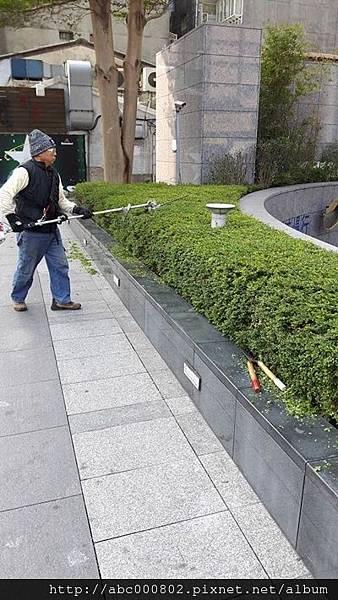 庭園維護保養2.jpg
