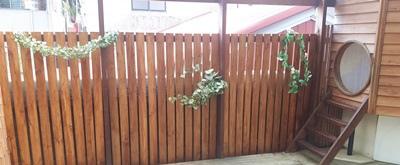 南方松圍籬1.jpg