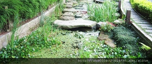 園藝工程0231.jpg