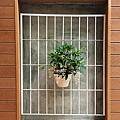 園藝造景11.jpg