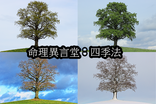tree-776932__340.png