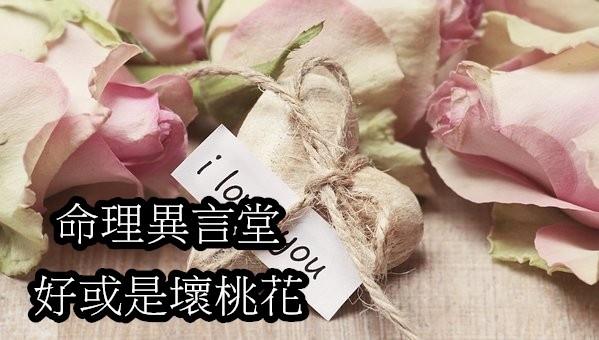 roses-2840743__340.jpg