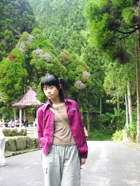 PIC_0049.JPG