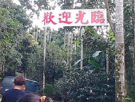 茶花園山路