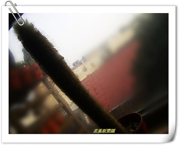 nEO_IMG_01.2.jpg