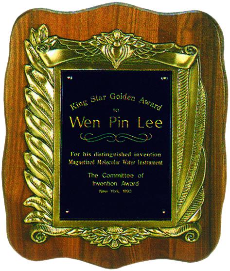1993 美國天王巨星發明金牌獎