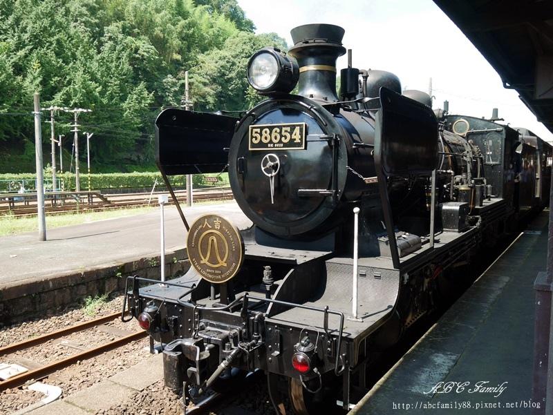 P1100253.JPG