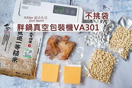 胖鍋真空包裝機va301團購_P01.jpg