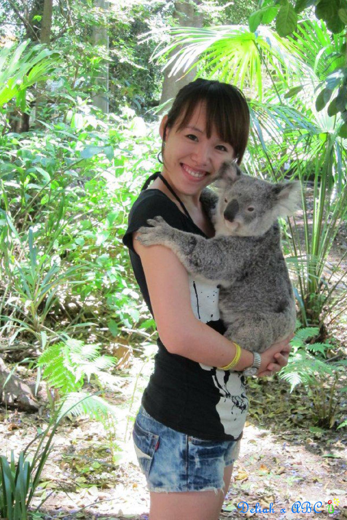 3 Deliah x Koala