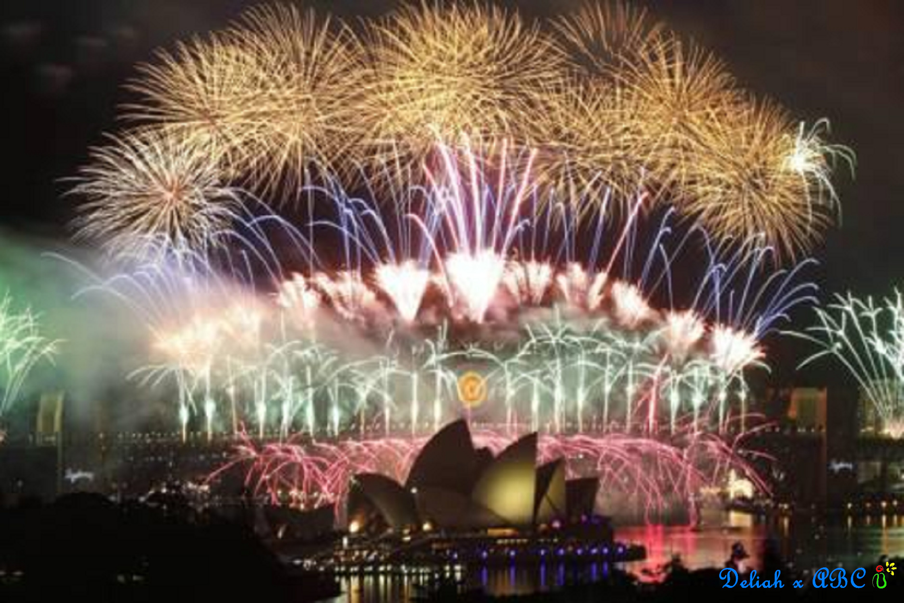 11 Count Down Firework in SYD