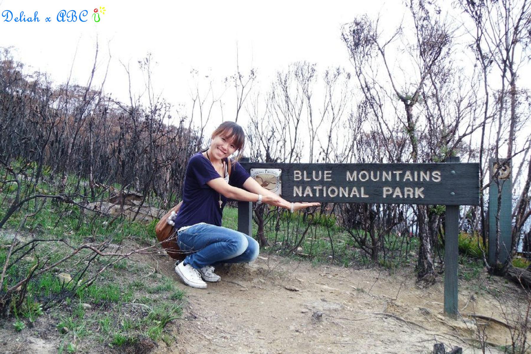 12 Blue Mt